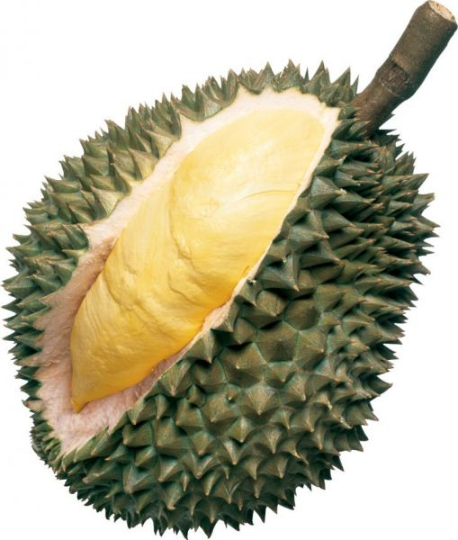 DURIAN WHOLE (MONGTHONG)