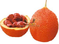 FROZEN MONORDICA FRUIT(TRAI GAC)