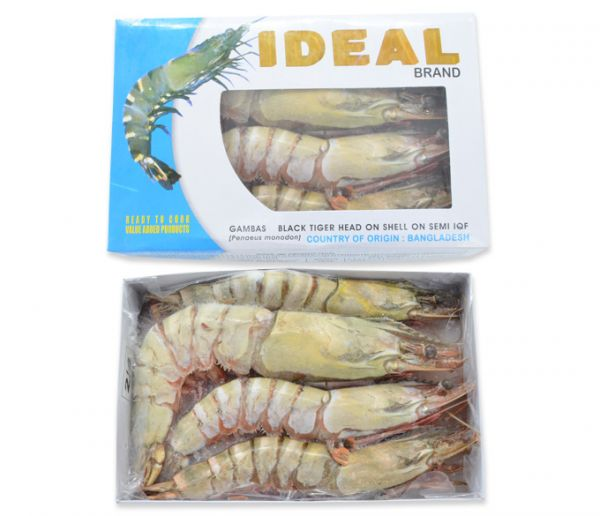 BLACK TIGER SHRIMP 2-4 HOSO